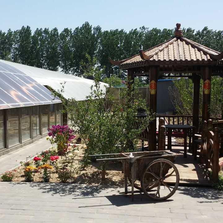 大棚农家院假山设计图展示